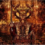 CAUTERIZATION - Males Infestus